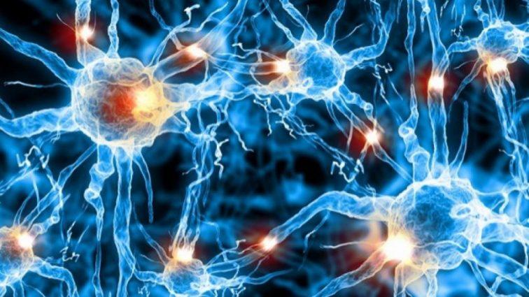 Ученые научились обманывать бактерии