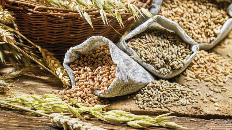 В Украине собрано 52500000. тонн зерновых культур