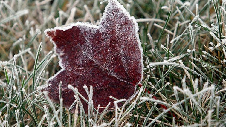 Погода устроит новые осенне-зимние испытания