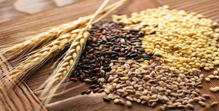 Украинские аграрии экспортировали более 14 млн тонн зерновых