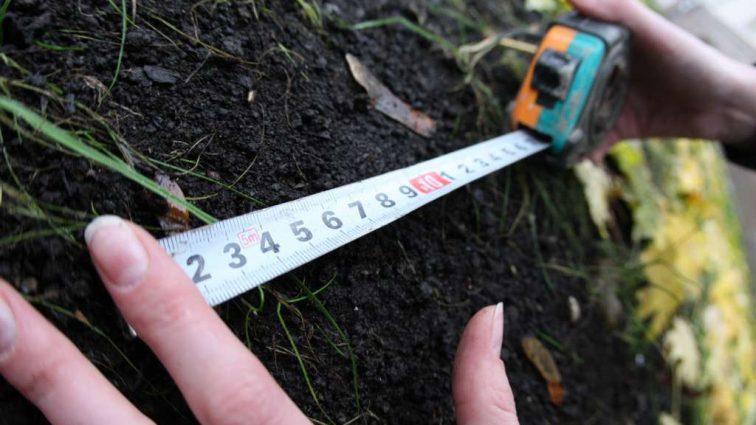 Земельная реформа в Украине может произойти уже в 2018: На что повлияют новые законы