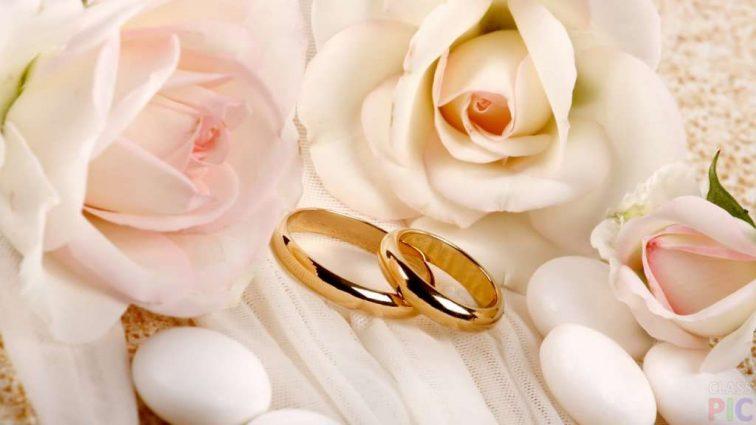 «Хочешь жениться — неси справку с …»: Молодоженов в загсах ждет «сюрприз»
