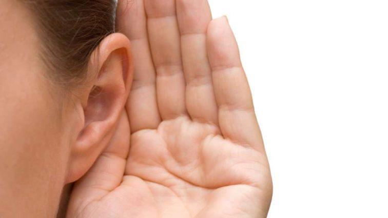 Теперь слух появится у каждого. Ученые провели эксперимент на мышах