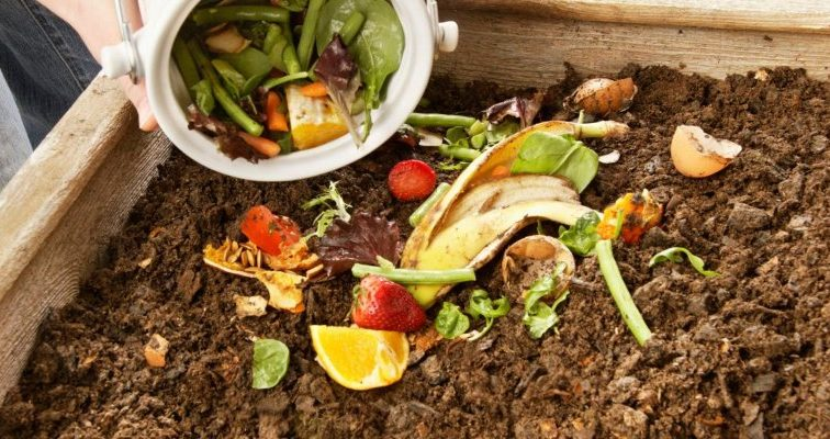 Деньги на ветер: Стало известно, сколько пищи украинцы выбрасывают в мусорник