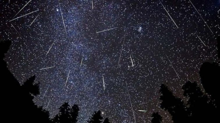 Стало известно, когда земляне увидят яркий звездопад года