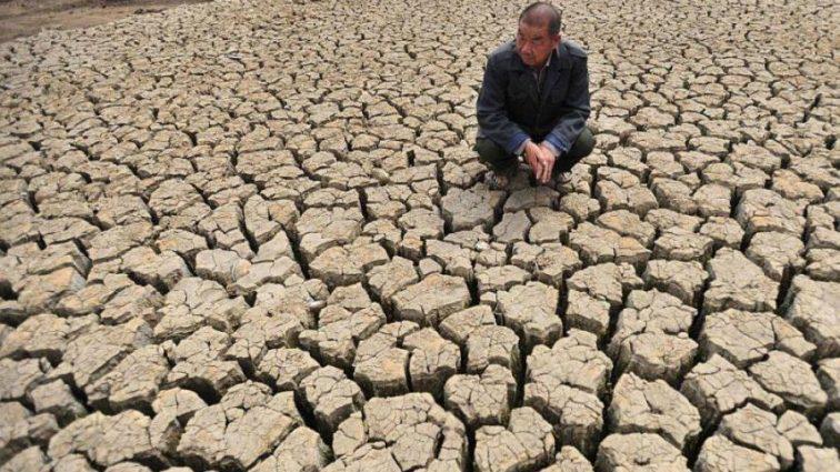 Последствия засухи будут просто ужасными. Человечеству советуют запастись водой