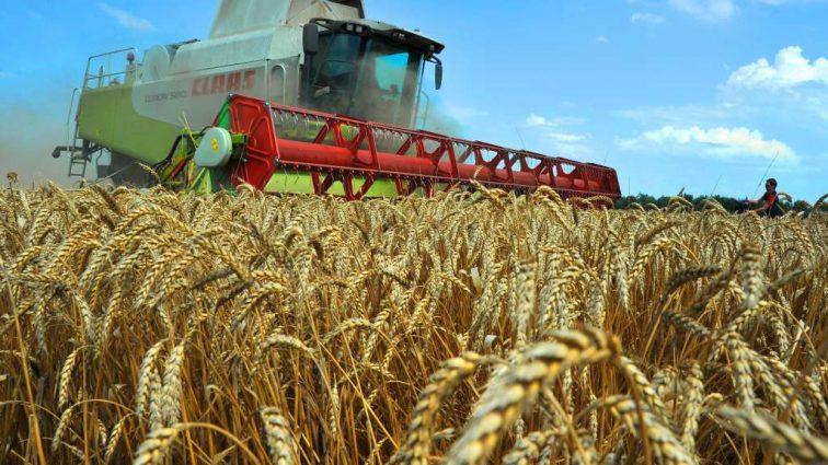 Украинские аграрии уже экспортировали 23 миллиона тонн зерновых