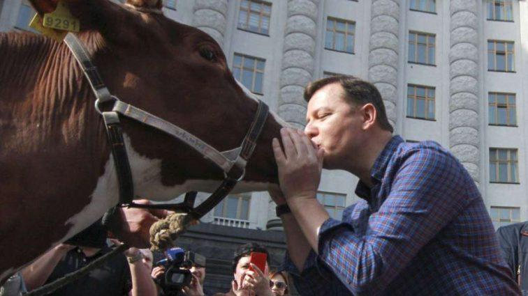 «Приведет к тому, что вырежут наших коров» — Ляшко сделал скандальное заявление о запрете продажи домашнего молока