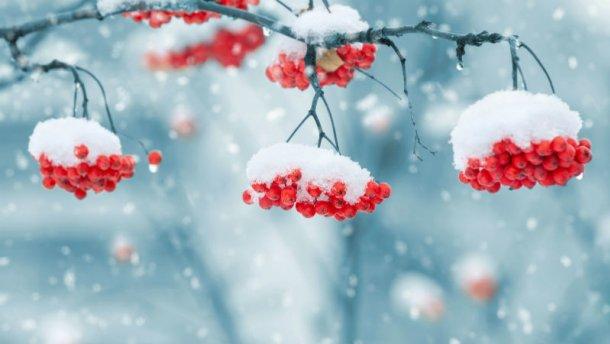 Будет холоднее прогноз погоды на 31 января