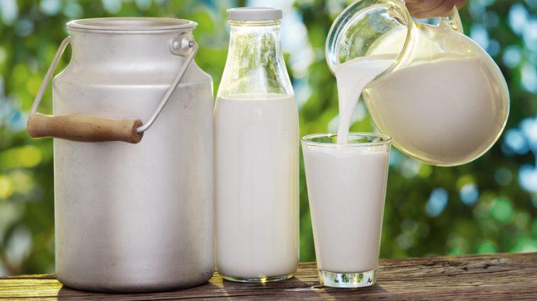 Подорожала: сколько теперь стоит молочная корзина?