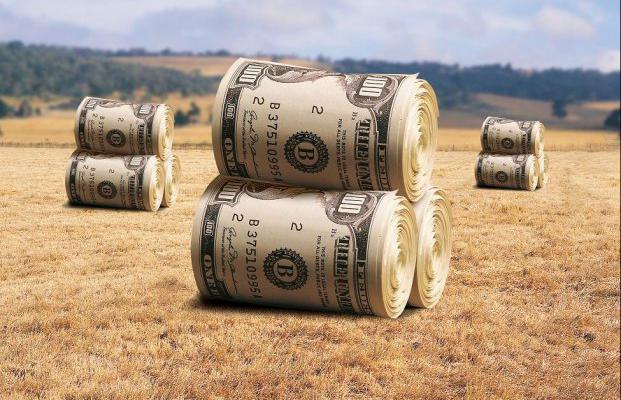Украинский мораторий на продажу земли: мнение экспертов