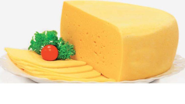Экспорт сыров: украинская продукция появится на полках торговых центров США и ОАЭ