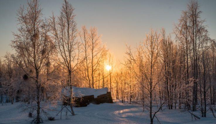 Потеплеет: прогноз погоды на 28 января