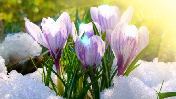 «Придет» календарная «весна»: узнайте прогноз синоптиков