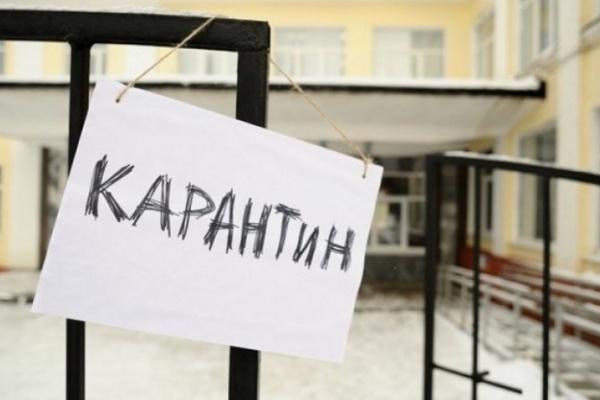 Сильный ветер, гололед: в каком украинском городе на несколько дней закроют школы из-за непогоды