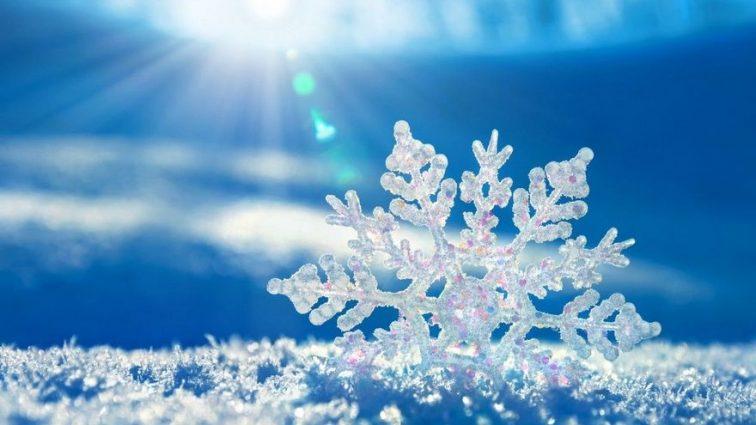«Это может стать причиной очень ранней весны»: Прогноз погоды на «День влюбленных»