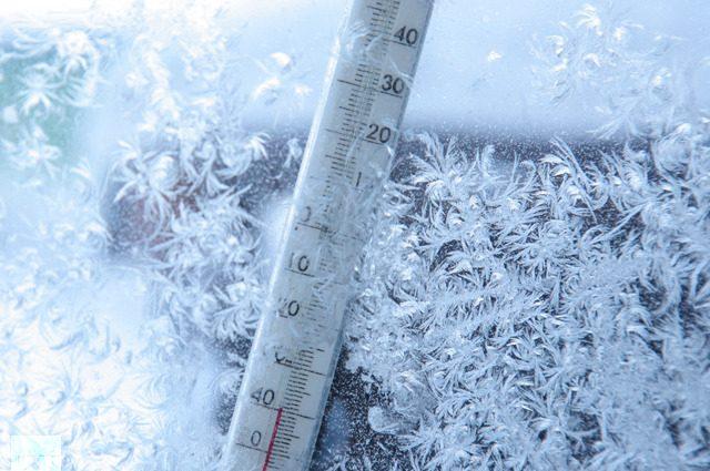 «В Украину придут морозы»: узнайте прогноз Укргидрометцентра на ближайшие дни