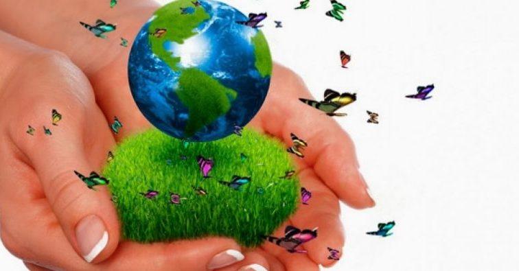 Утилизация бытовых отходов: кто и как будет платить