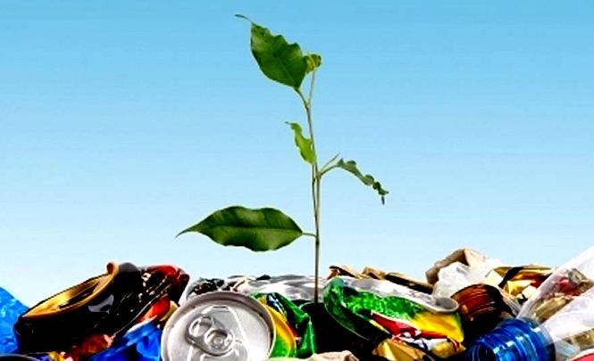 Верховная Рада готовит новый законопроект про «Экологический налог», — узнайте, что изменится