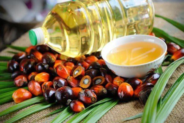 Верховная Рада планирует запретить пальмовое масло: узнайте детали