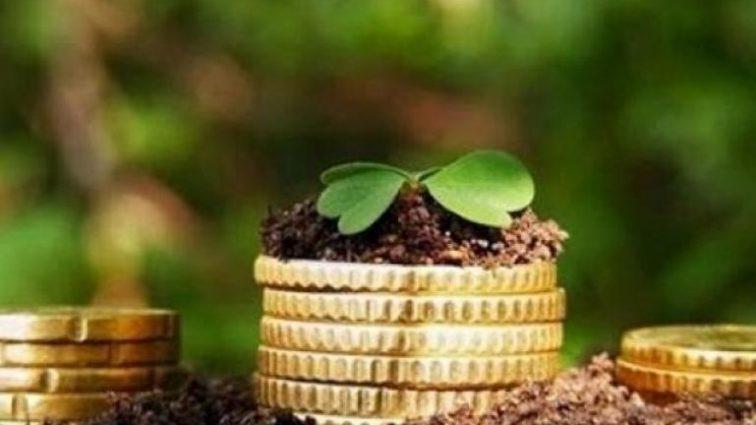 Налог на землю: как быть пенсионерам?