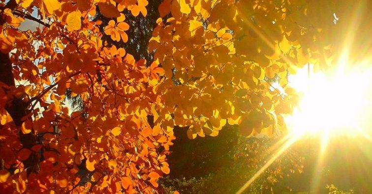 Прогноз погоды на 28 сентября: Украину ждет приятный сюрприз