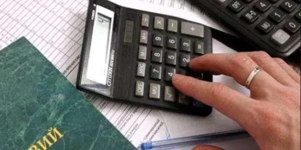 Кто попадет по прицел налоговой в 2019 году?