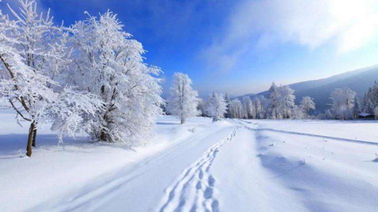 Прогноз погоды на Новый Год и Рождество